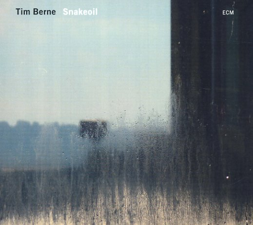 berne tim~~ snakeoil~ 101b My best jazz of 2012 lists