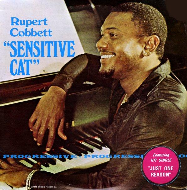 Rupert Cobbett Sensitive Cat