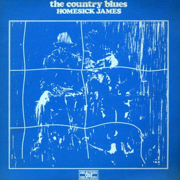 Homesick James - Chicago Slide Guitar Legend