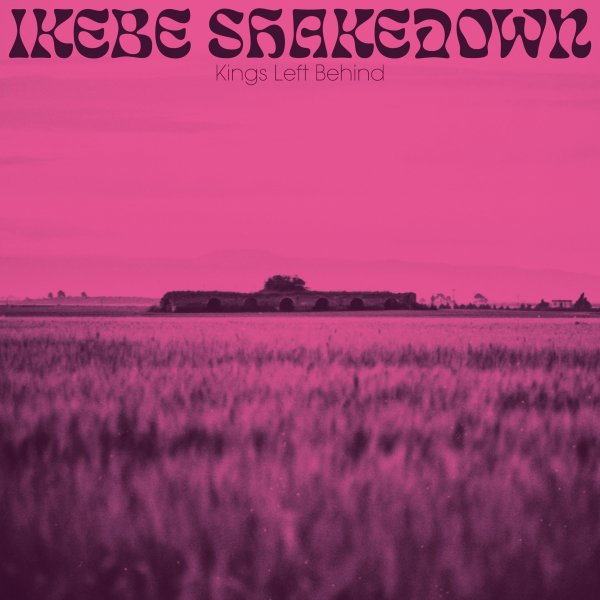 Kings Left Behind (pink vinyl pressing - with download)