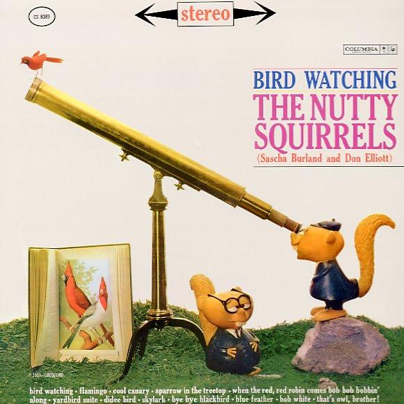 nuttysquirr_birdwatch_101b.jpg