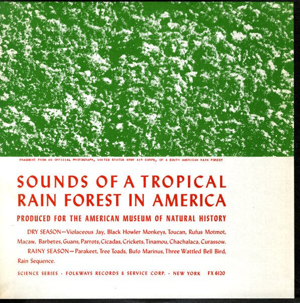 Rain Forest : Sounds Of A Tropical Rain Forest In America (LP, Vinyl
