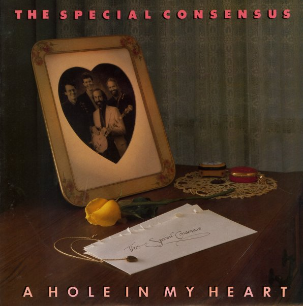 Special consensus hole in my heart lp vinyl record for Cons 101